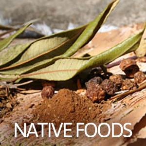 native-foods