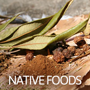 native-foods