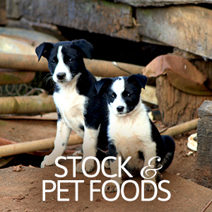 pet-stock-foods